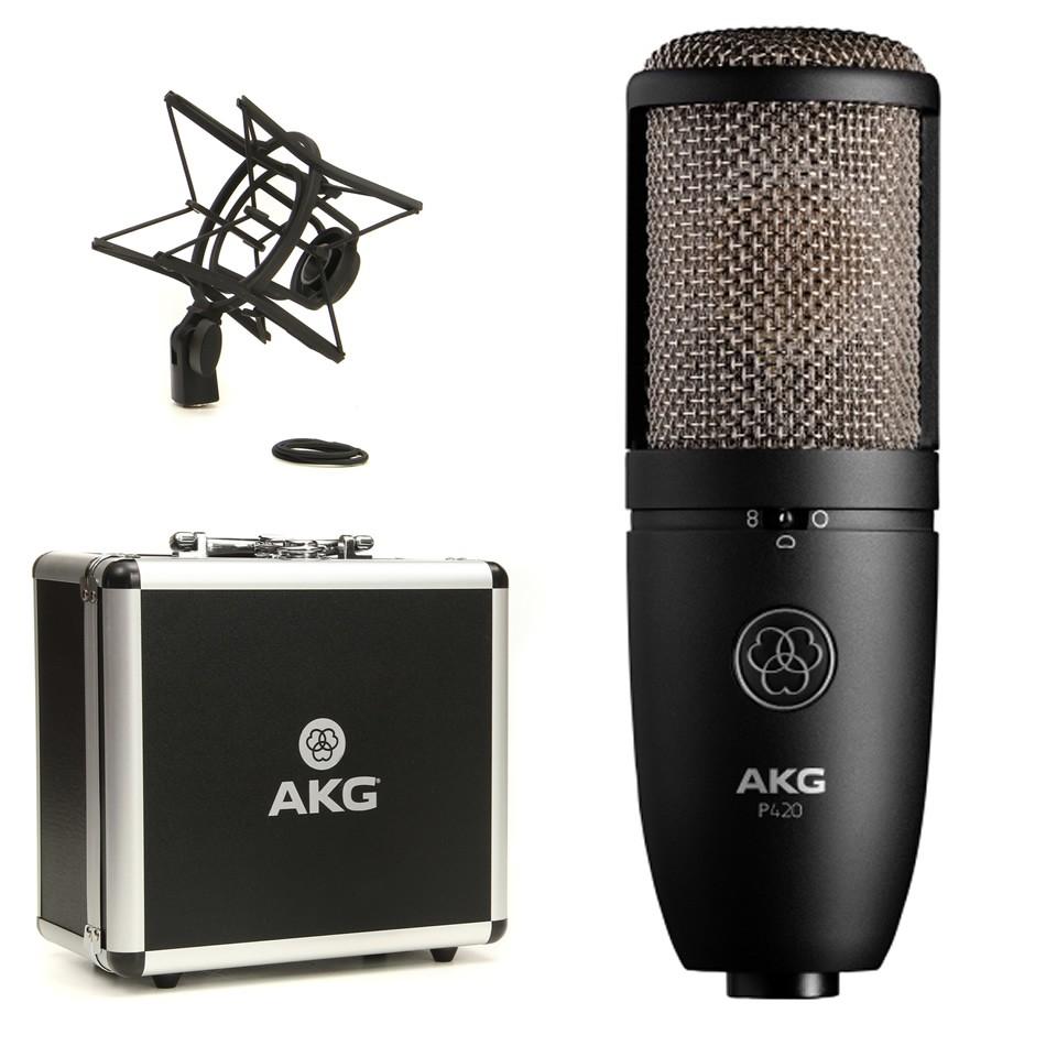 The AKG P420