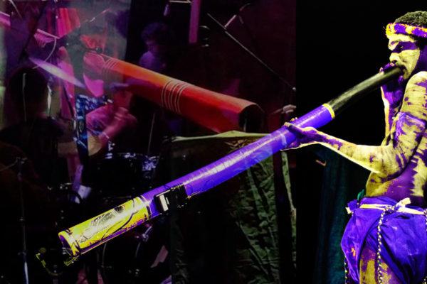 How Do You Mic… Yidaki (didgeridu)