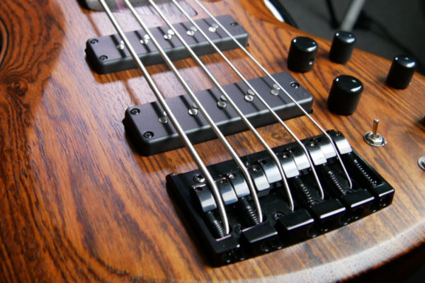 2019 ESP LTD B-1005NS BOCOTE 5 STRING BASS – A FIRST LOOK