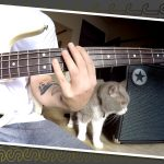 Just Sounds: Part 2-Blackstar Unity 30 Bass